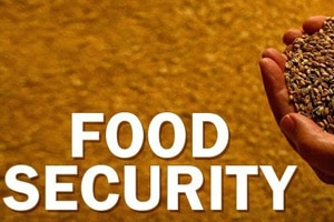 food security rules